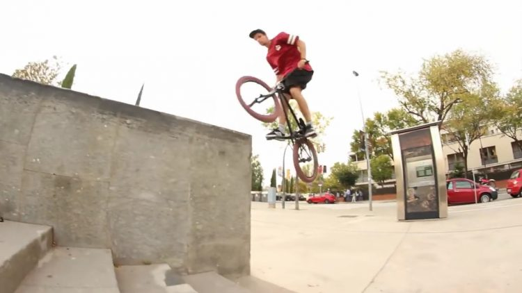 dub bmx graft 2 mix section